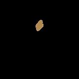 gold bolt-01.png