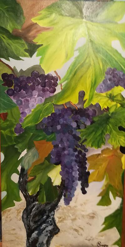 raisins Bergerac