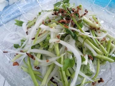 【レシピ】新玉ねぎとセリの春サラダ