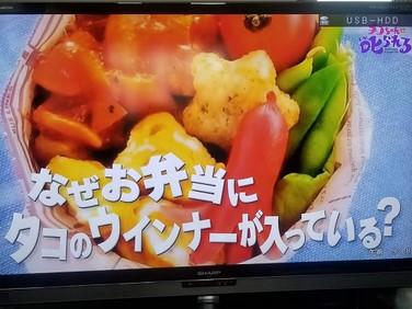 NHK「チコちゃんに叱られる!」でお弁当写真が登場しました♪