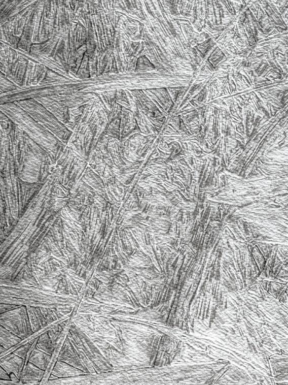Big Grass (detail)