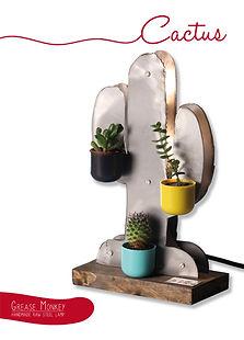 cactus ADV.jpg