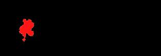 PINPOINT larger logo.png