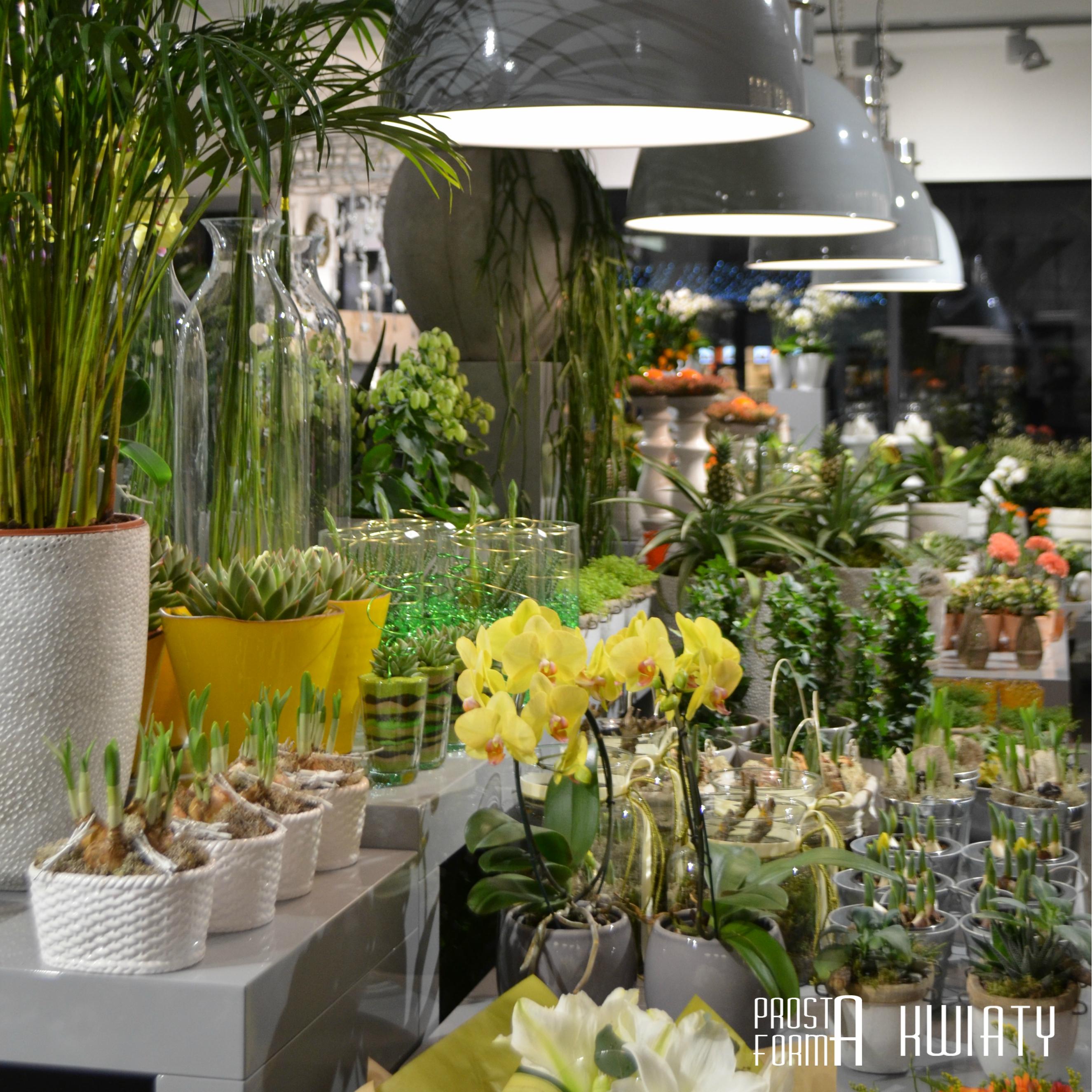Kwiaciarnia Gdańsk