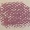 Thumbnail: Pale Violet Red: 1 Pastel