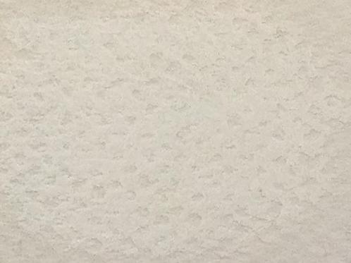 Blanc de titane: 1 Pastel
