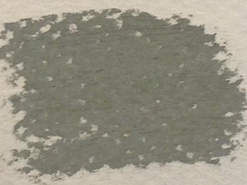 Green Grey: 1 Pastel