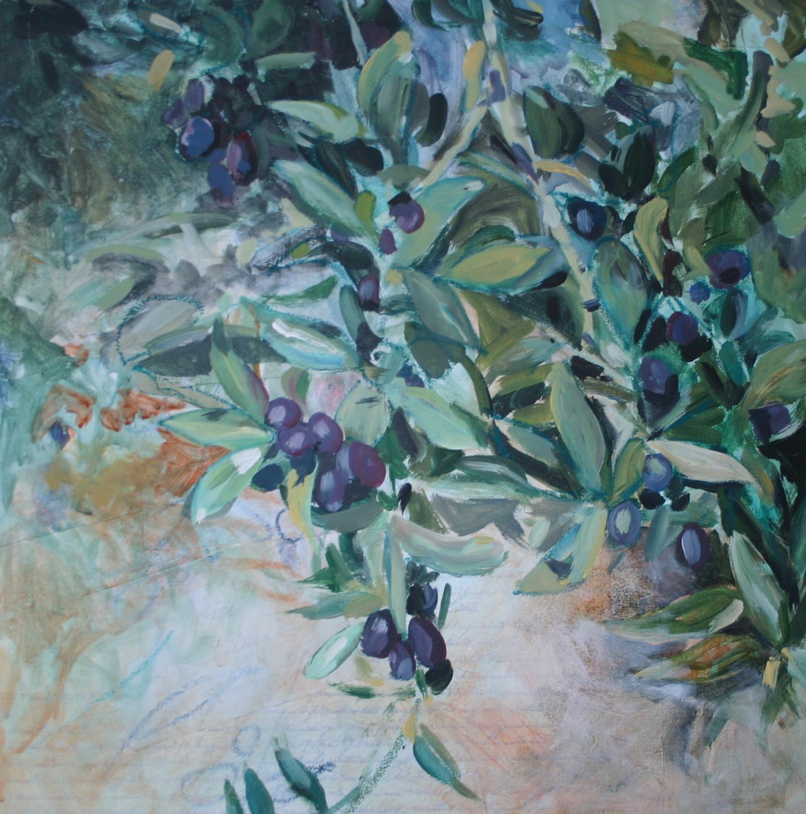 Olive Branch 8801