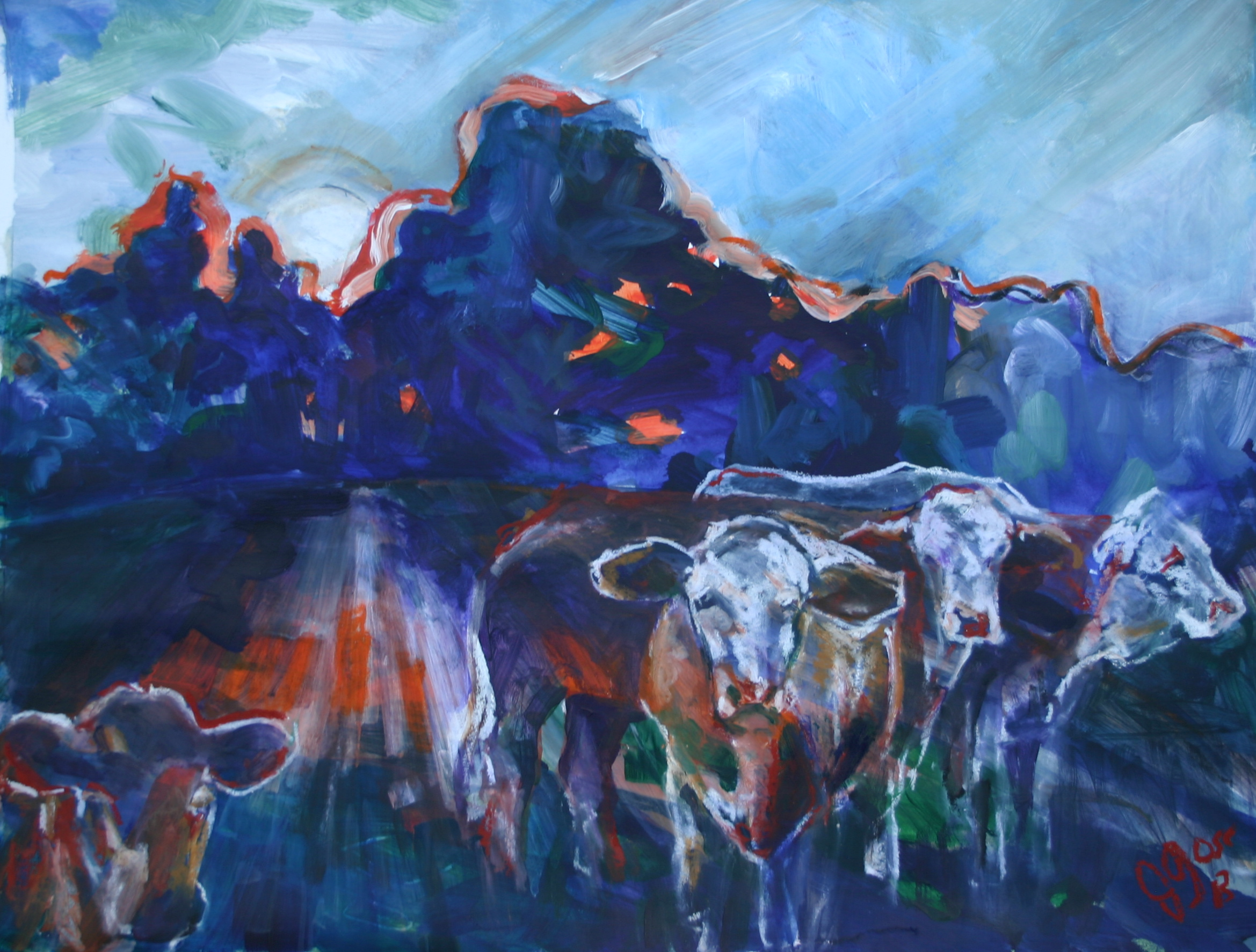 Night Cows 0473