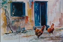 Greek Chickens 0004