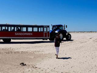 Die nördlichste Sandbank Dänemarks- wo die Nord- auf die Ostsee trifft.