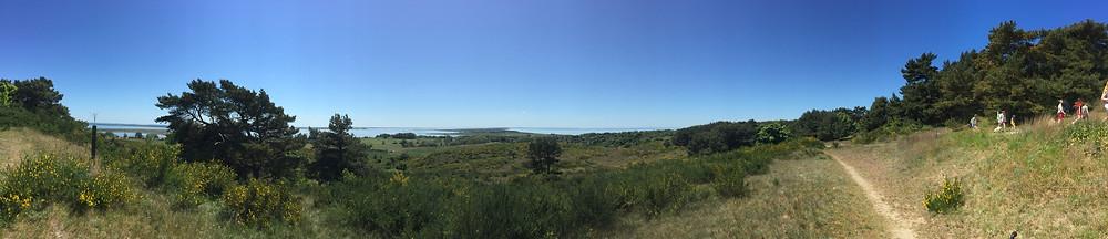 Aussicht vom Dornbusch auf Hiddensee