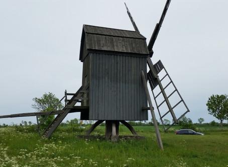 Auf der Suche nach Windmühlen