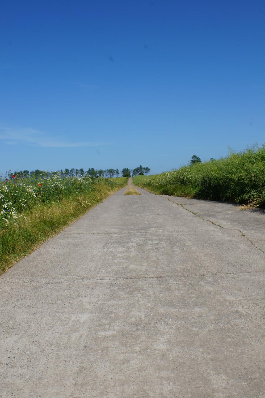 einer der Fahrradwege