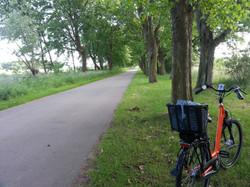 Fahrrad-Allee