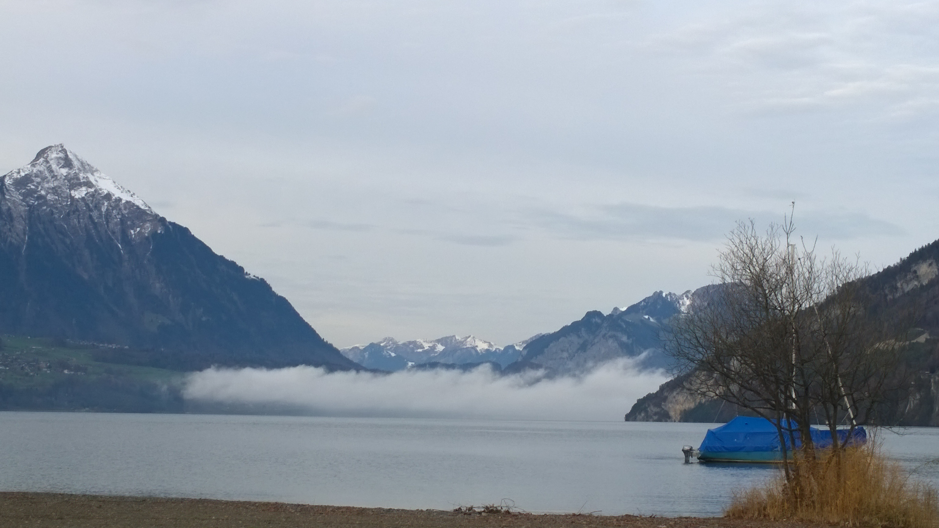 Camping Manor Farm Interlaken