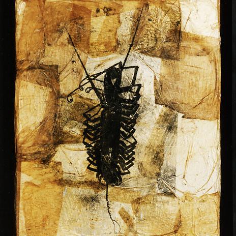 1998 - Százlábú Fotogram 50x60 cm, marhabőr, ezüstzselatin
