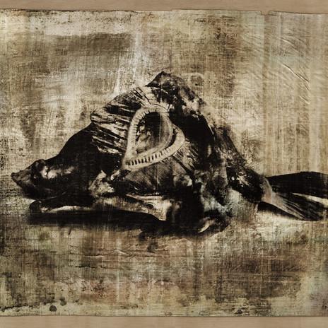 2003 - Fénykarc - ezüst zselatin réteg papiruszon 60x50 cm