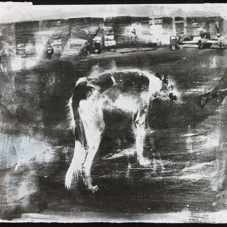1998 - Piazza Navona - ezüstzselatin réteg s.k. merített papíron 60x50 cm