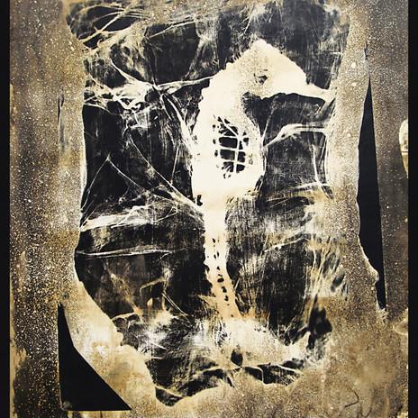 1999 - Csikóhal - fotogram 70x100 cm