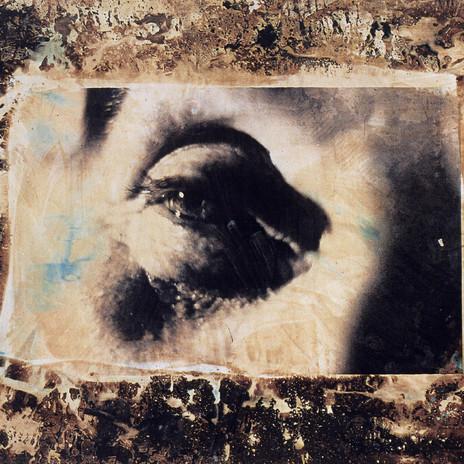 1997 - Szem 102 x143 cm