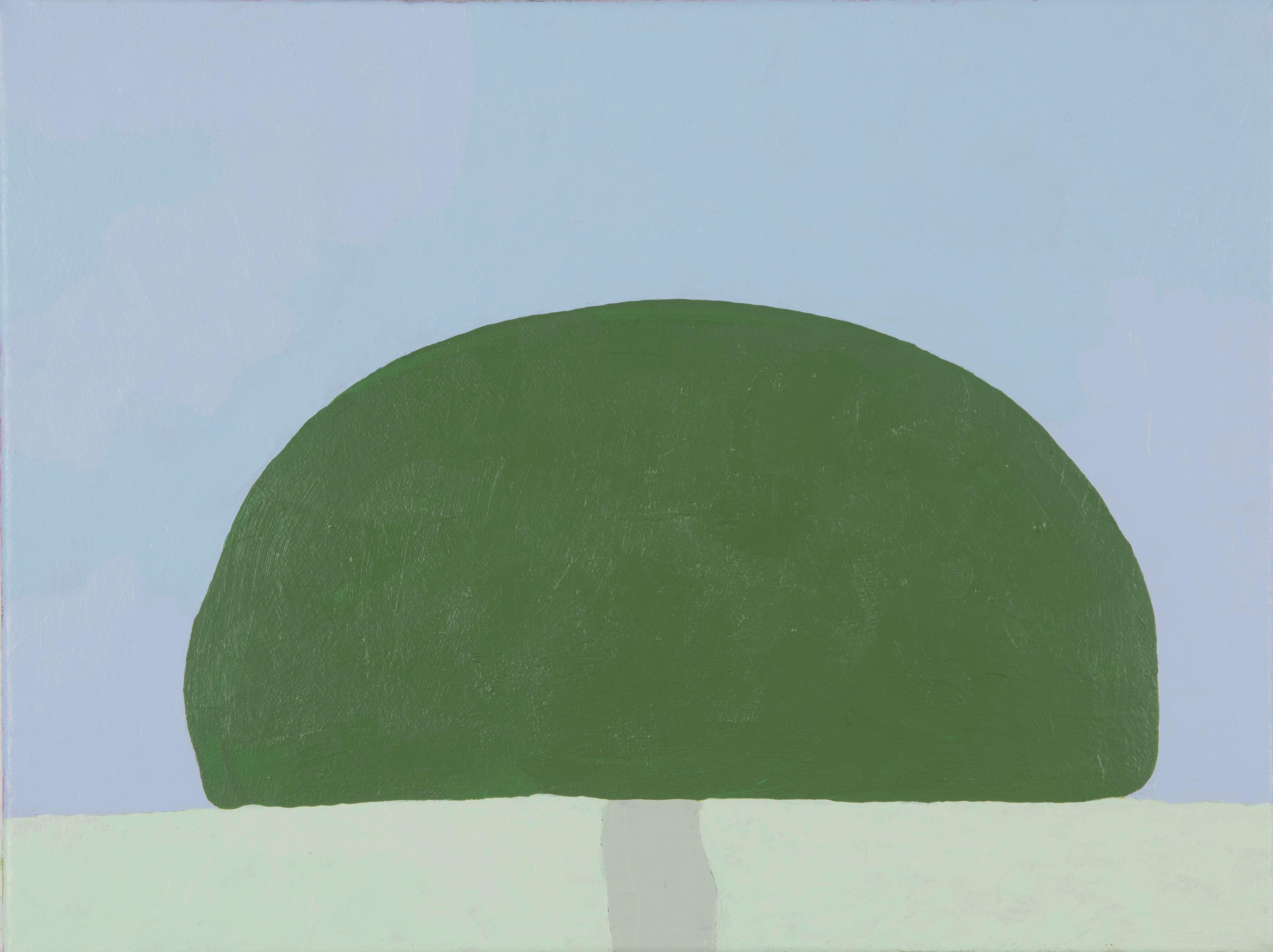 Olive Tree | 30x40cm | 2018