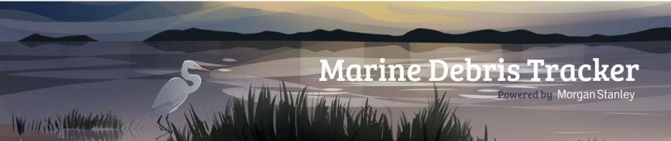 cropped-MDT_Website-Banner_MorganStanley