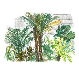 Barbiacn Conservatory.jpg