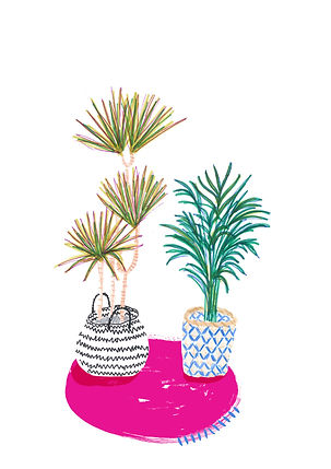house plants and baskets on rug.jpg