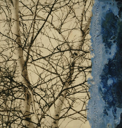 Birches with Blue Encaustic by LLeavitt 10x10 inches_edited