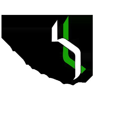 BRINGALAND LOGO.png