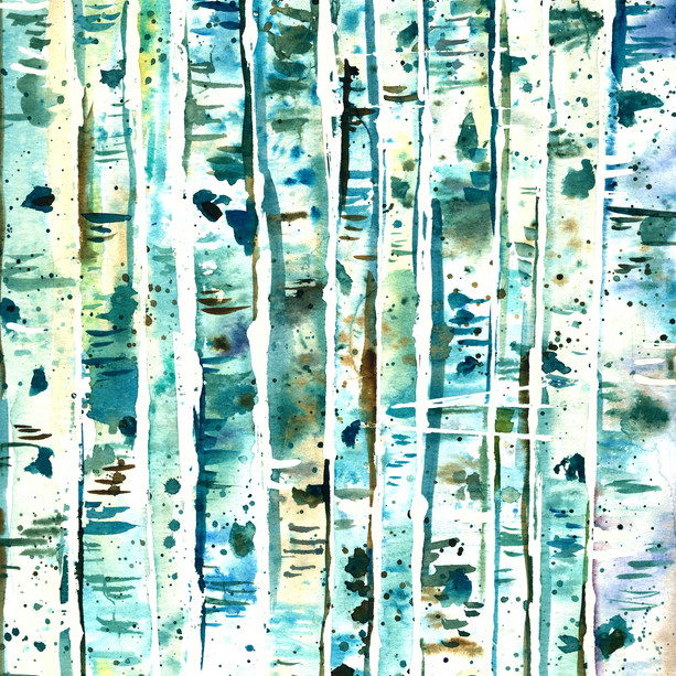 White Bark Blue Rain Aspens