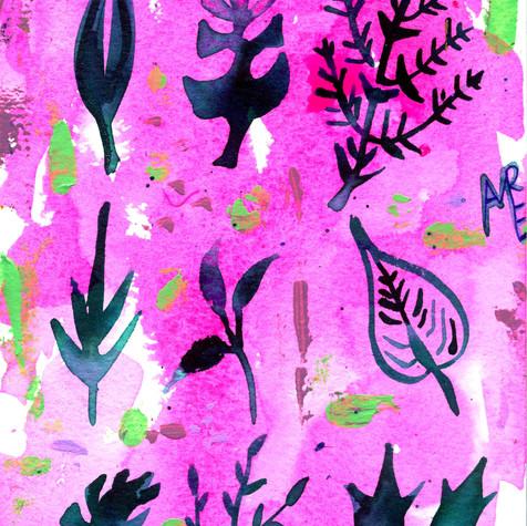 Leaf Silhouette on Pink