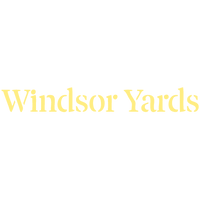 WY-logo-YELLOW.png