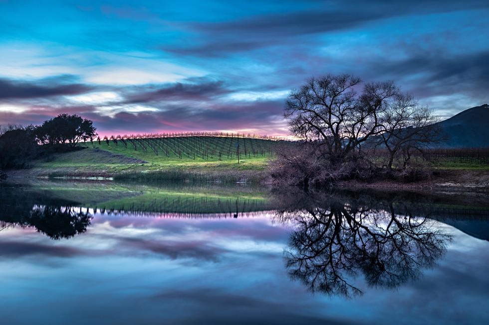 Napa Sunset Reflections