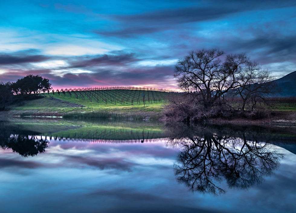 Napa Sunset Reflections.jpg