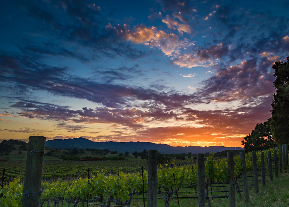 18.05.05 Winecountry Sunset.jpg