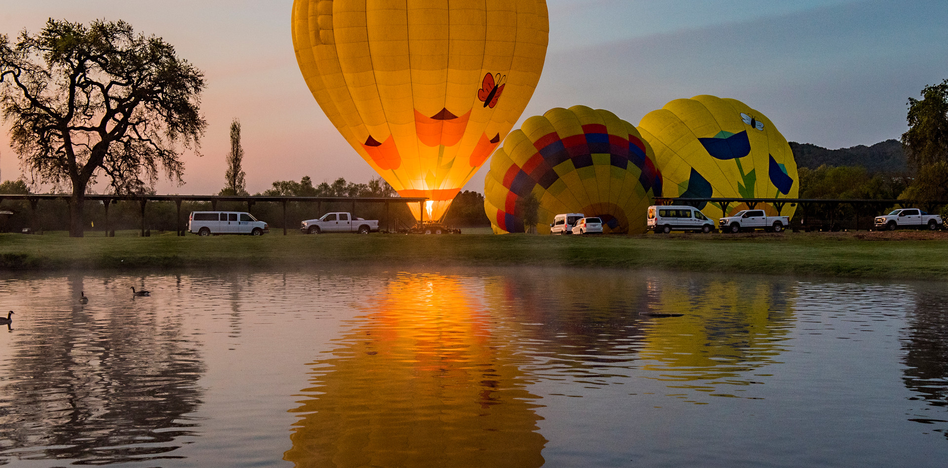 Balloons Reflected