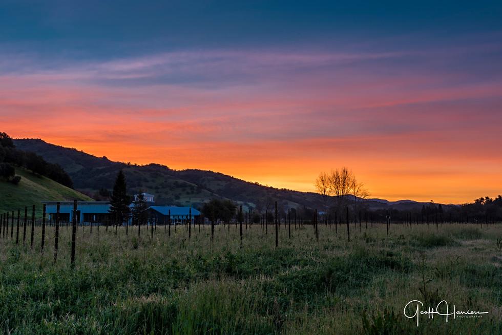 Stags Leap AVA Sunrise
