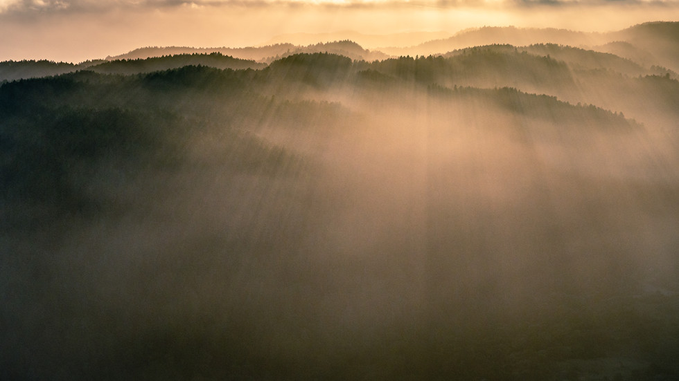 Marin Hills in Fog
