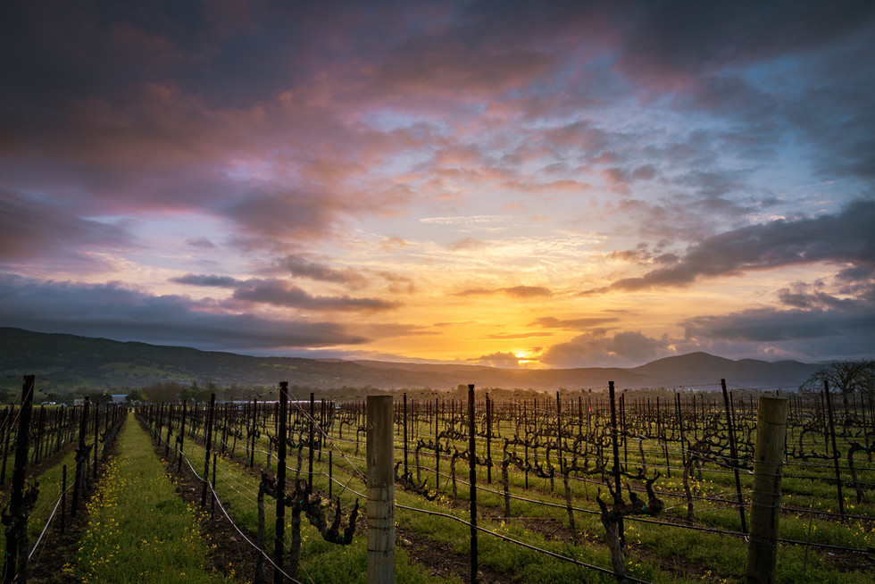 Big Ranch Sunrise