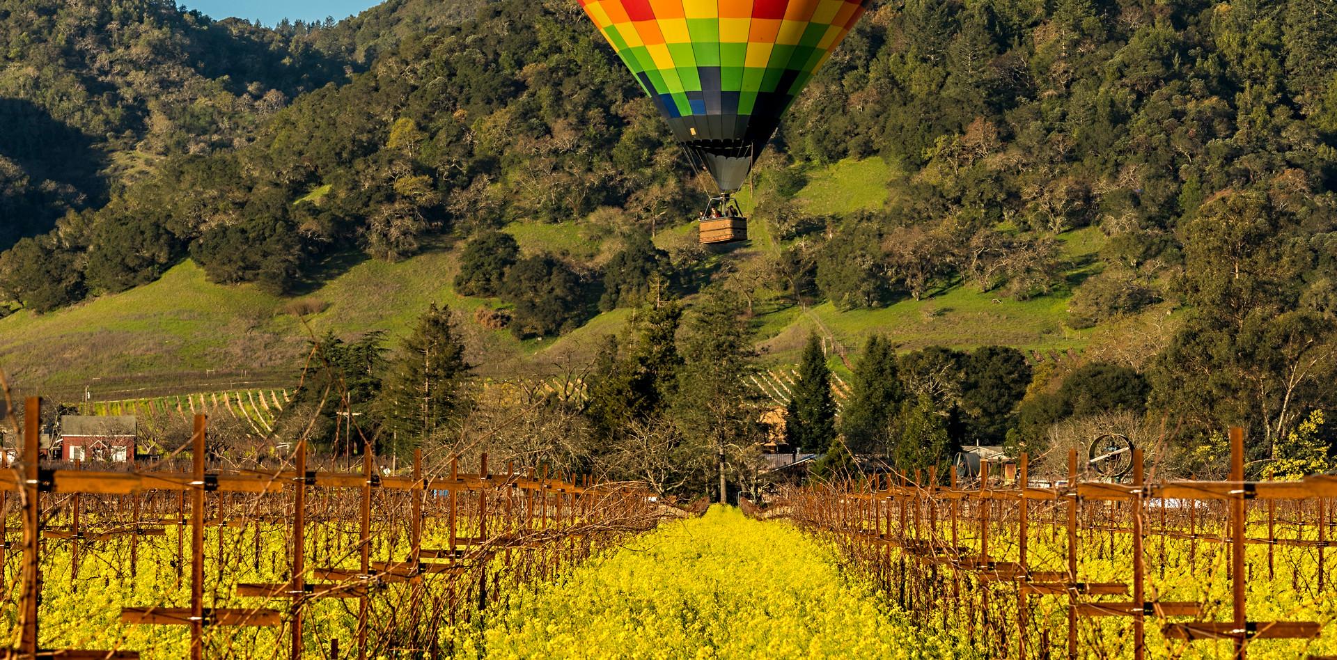 Balloon over Mustard