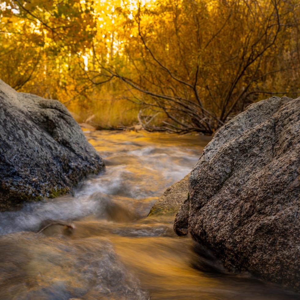 Mill Creek Gold