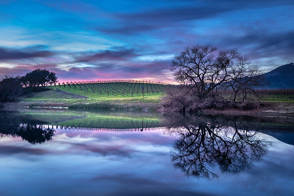 Napa Sunset Reflections