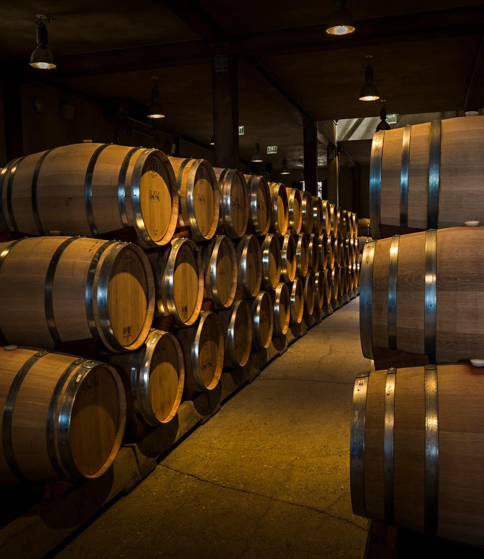 Barrel Room #2