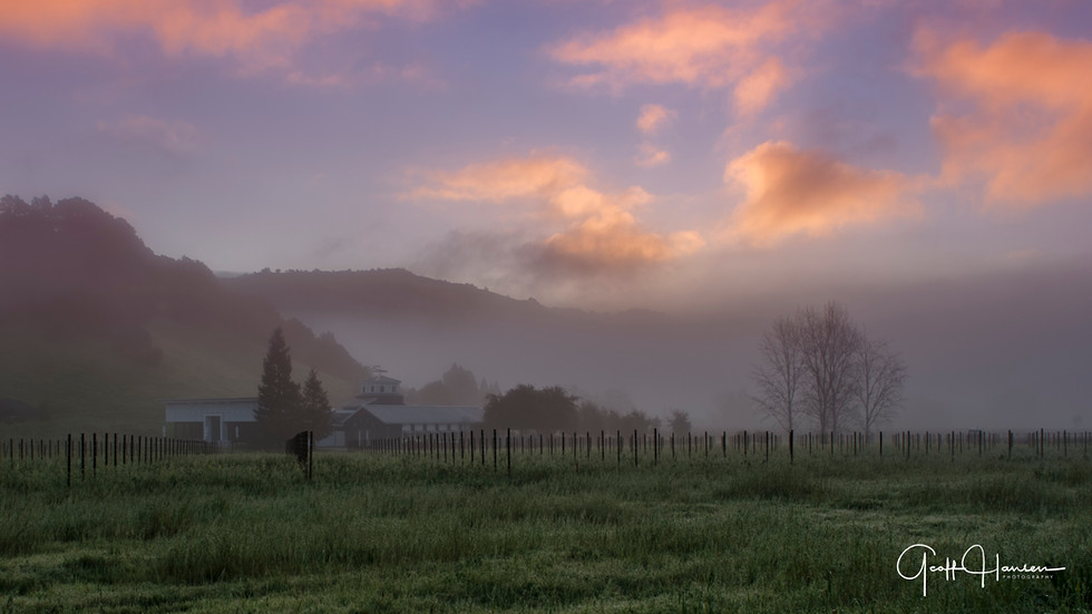 Stags Leap Area Winery  at Daybreak