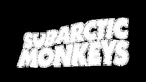 logo-massive-001 white (1).png