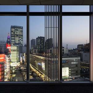 shinjukuhifuka-nightview.jpg