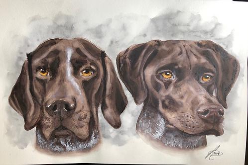12x16 Double Pet Portrait