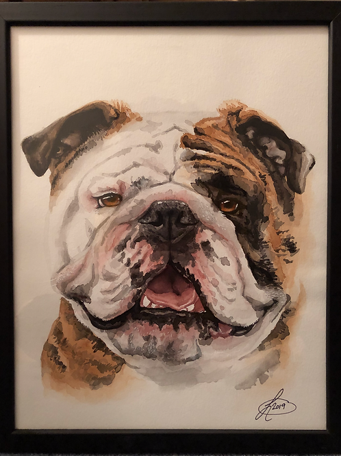 11x14 Framed Custom watercolor Pet Portrait